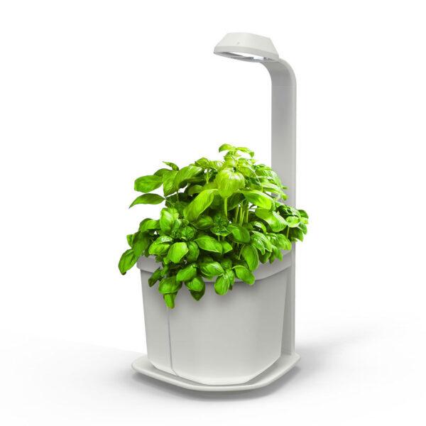 Sensores plantas e animais